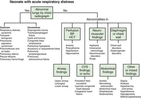 Respiratory Tract Disorders | Obgyn Key