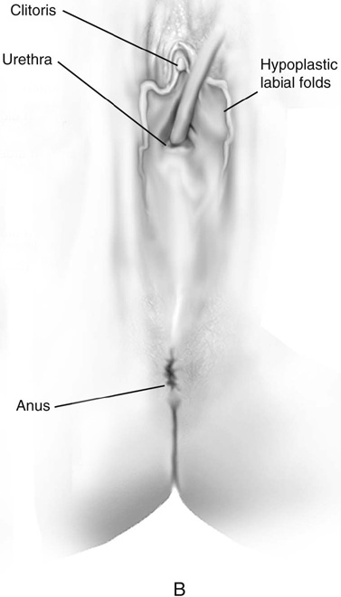 Lycra femdom tickling