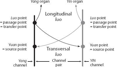 Systematics | Obgyn Key